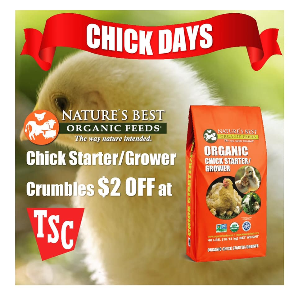 chick days coupon