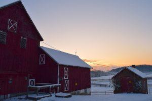 barn in morning