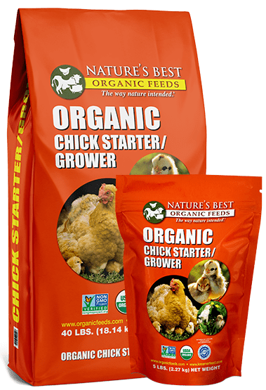 2 orange bags of organic chick starter and grower crumbles